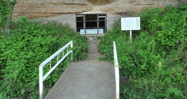 岩村田のヒカリゴケ